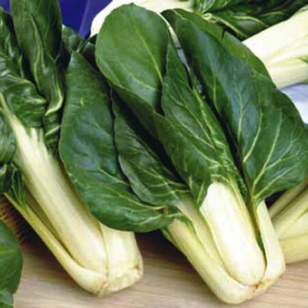 Barese, Swiss Chard Seeds - Packet image number null