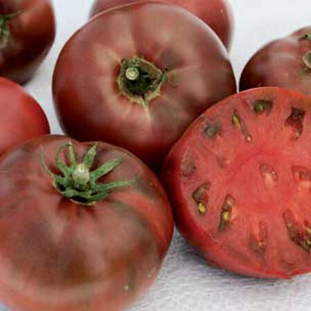 Carbon, Organic Tomato Seeds - Packet image number null