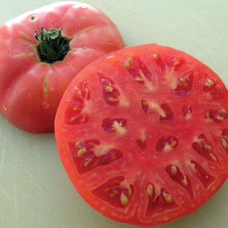 Sudduth's Strain Brandywine, Tomato Seeds - Packet image number null