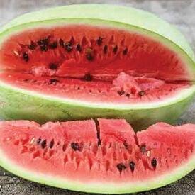 Charleston Grey, Watermelon Seeds