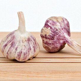 Purple Italian, Garlic Bulbs
