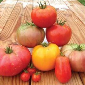 Heirloom Blend, Tomato Seeds