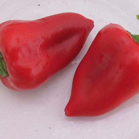 Salsa, Pepper Seeds - Packet image number null
