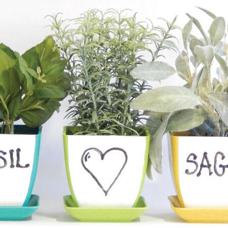 Dry Erase, Herb Kits image number null