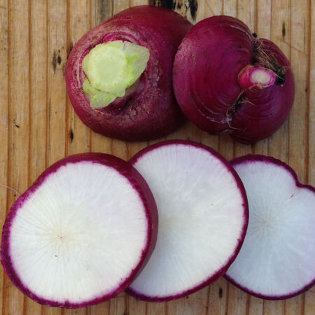 Purple Plum, Radish Seeds - Packet image number null