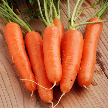 Fancy Nantes, Carrot Seeds - Packet image number null