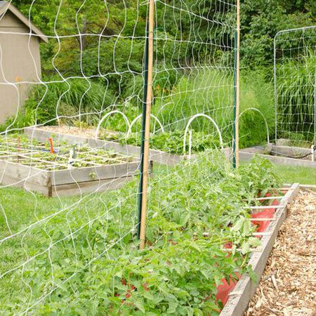 Commercial Trellis Netting, Crop Supports - 6.5x100 ft. image number null