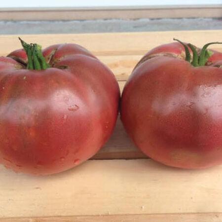 Cherokee Purple, Tomato Seeds image number null