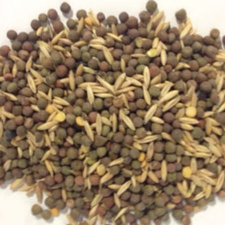 Field Peas and Oats Blend, Blends - 1 Pound image number null