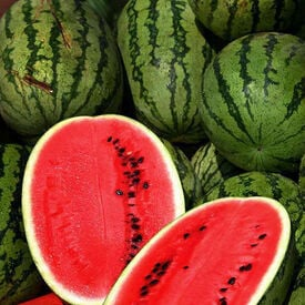 All Sweet, Watermelon Seeds