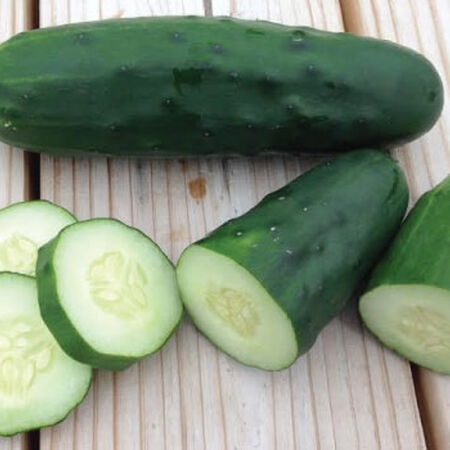 Marketmore 76, Cucumber Seeds - Packet image number null