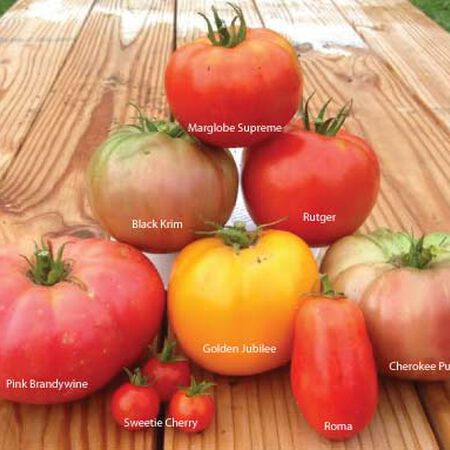 Heirloom Blend, Tomato Seeds - Packet image number null