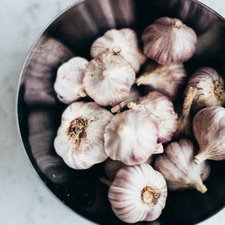 Yugoslavian, Garlic Bulb - 1/4 Pound image number null