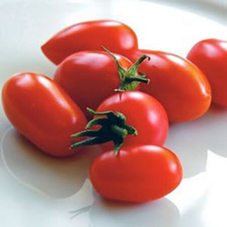 Juliet, (F1) Tomato Seeds image number null