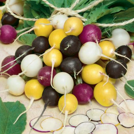 Halloween Mix, Radish Seeds