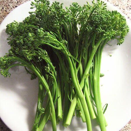 Spring Raab, Broccoli Seeds - Packet image number null