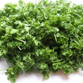 Curled, Cress Seed