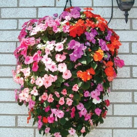 Hanging Flower Pouch, Containers