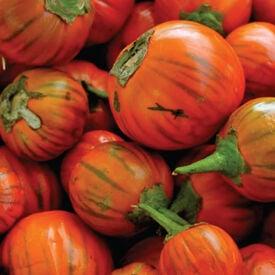Turkish Orange, Eggplant Seeds
