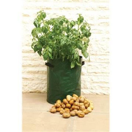 Potato Tubs, Containers - 5 Potato Tubs image number null