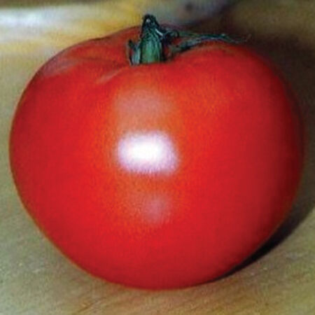 Jet Star, Tomato Seeds - Packet image number null