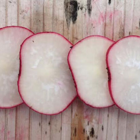 Cherry Belle, Radish Seeds - Packet image number null
