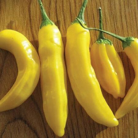 Lemon Drop, Pepper Seeds - Packet image number null
