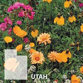Utah Blend, Wildflower Seed
