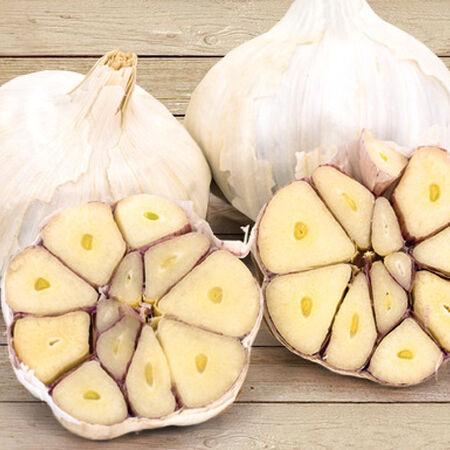 Lorz Italian, Garlic Bulbs image number null