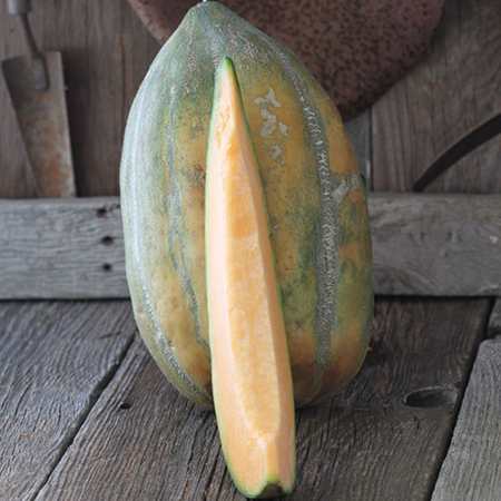 Bidwell Casaba, Melon Seeds - Packet image number null
