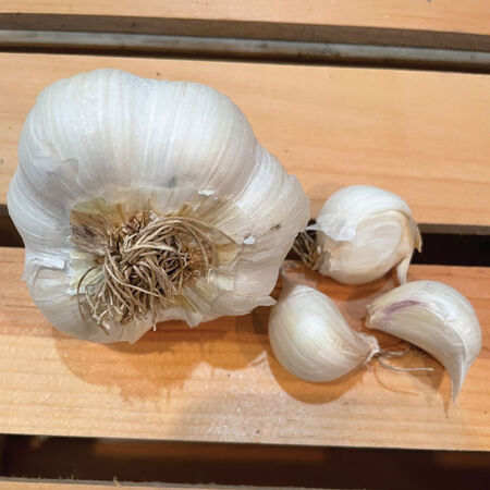 Inchelium Red, Garlic - 1/4 Pound image number null