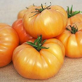 Kellogg's Breakfast, Tomato Seeds