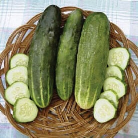 Ashley, Cucumber Seeds