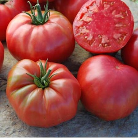 Caspian Pink, Organic Tomato Seeds - Packet image number null