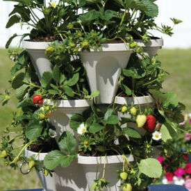 Stackable Planters, Containers
