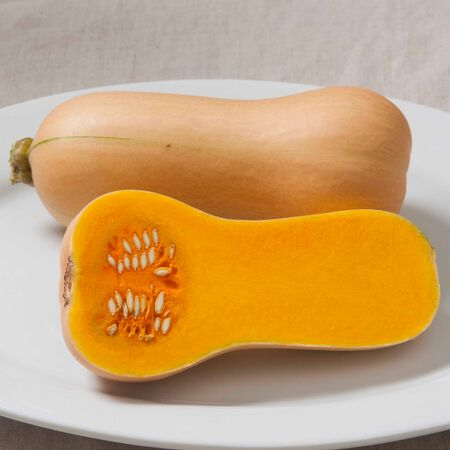 Early Butternut, Squash Seeds - Packet image number null