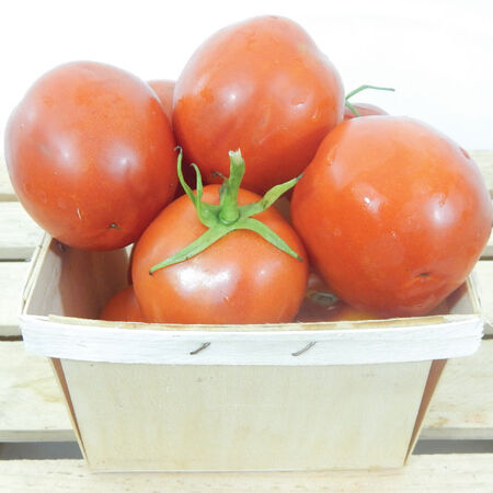 Moneymaker, Tomato Seeds - Packet image number null