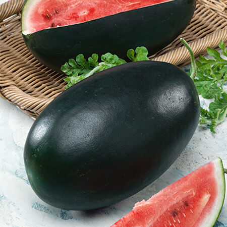 Nobility F1, Watermelon Seeds - Packet image number null