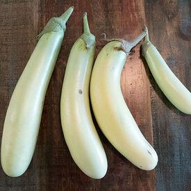 Louisiana Long Green, Eggplant Seeds
