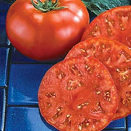 Beefmaster, Tomato Seeds - Packet image number null