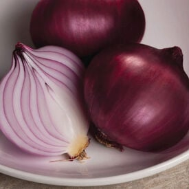 Red Rock, (F1) Onion Seeds