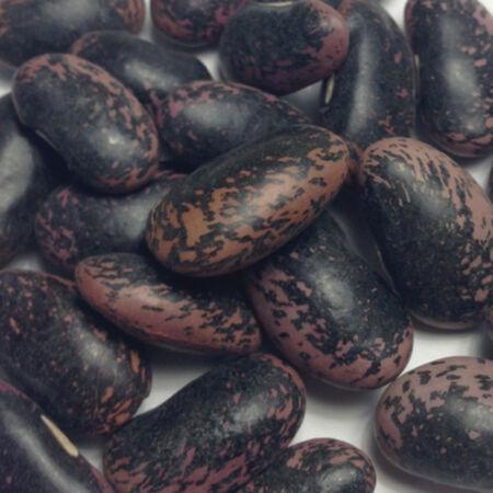 Scarlet Runner, Bean Seeds image number null