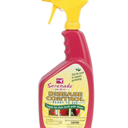 Garden Disease Control Spray Seed,  Pest and Disease - Quart image number null