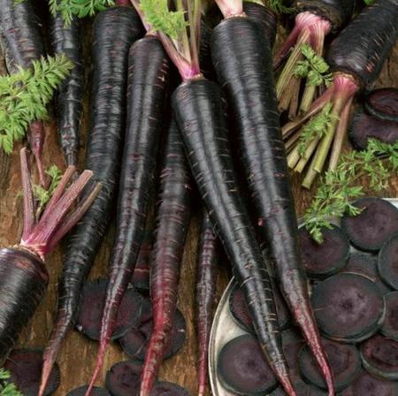 15 Rare Black Nebula Carrot Seeds