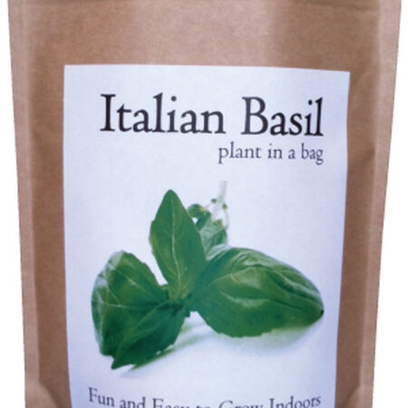 Plant in a Bag, Herb Kits - Basil image number null