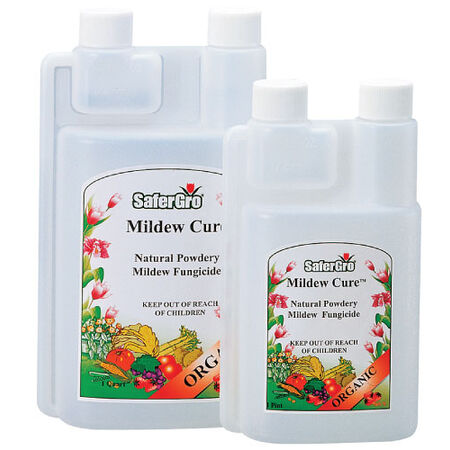 Mildew Cure Concentrate, Pest and Disease image number null
