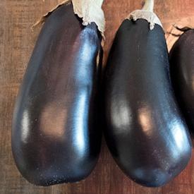 Florida Market High Bush, Eggplant Seeds