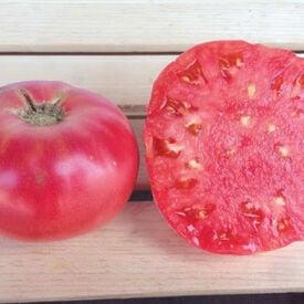 Pink Brandywine, Tomato Seeds
