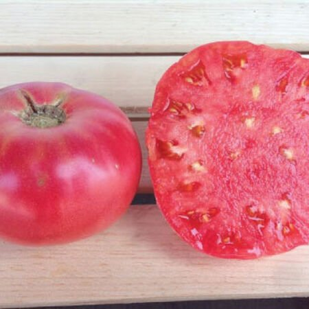 Pink Brandywine, Tomato Seeds - Packet image number null