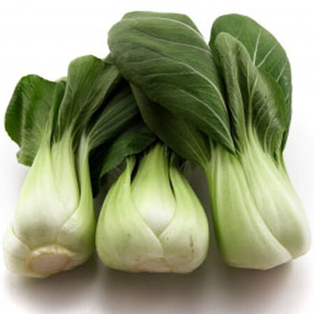 White Stem, Cabbage Seeds - Packet image number null